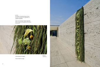 cover of Barcelona Floral Arquitecture